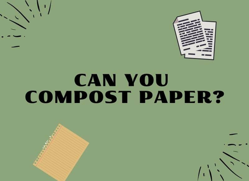 can you compost paper?