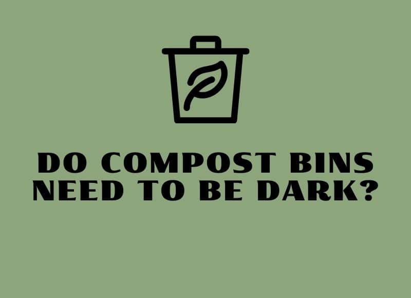 do compost bins need to be dark