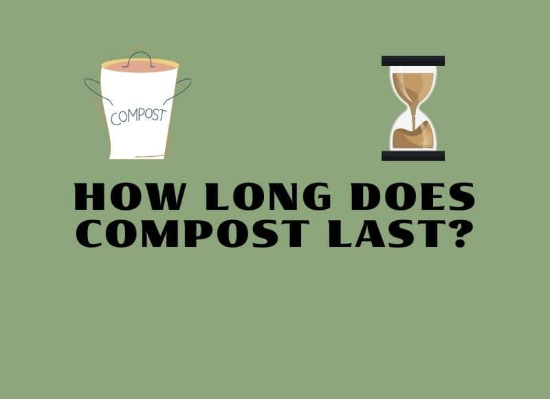 how long does compost last