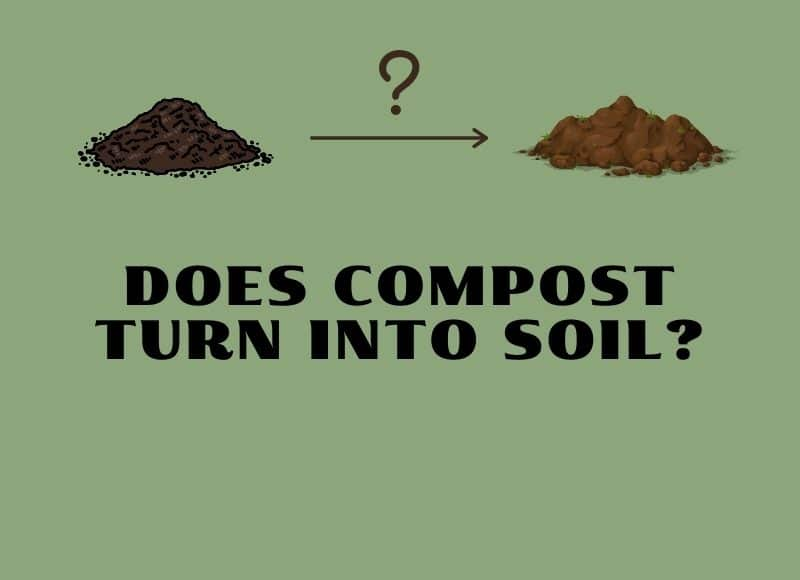does compost turn into soil