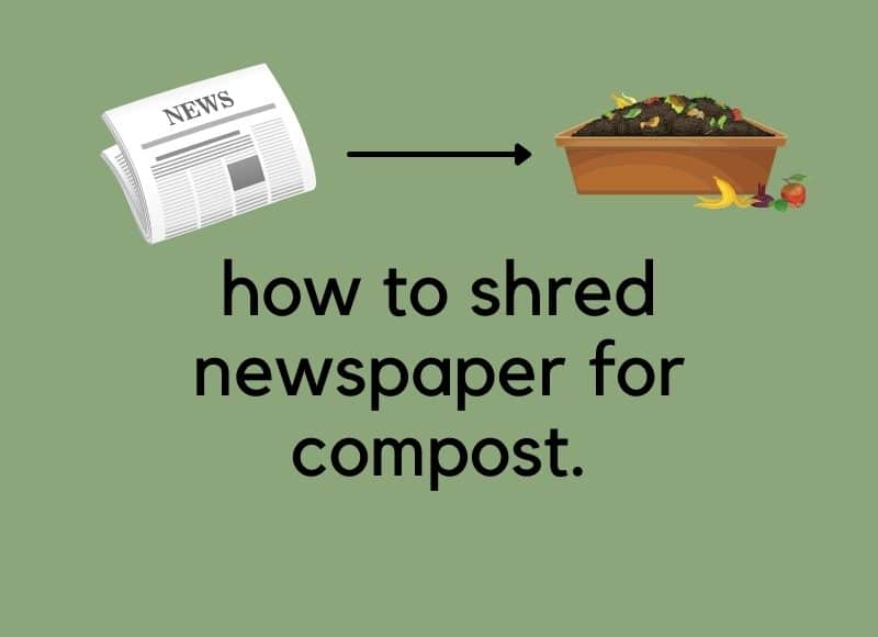how to shred newspaper for compost